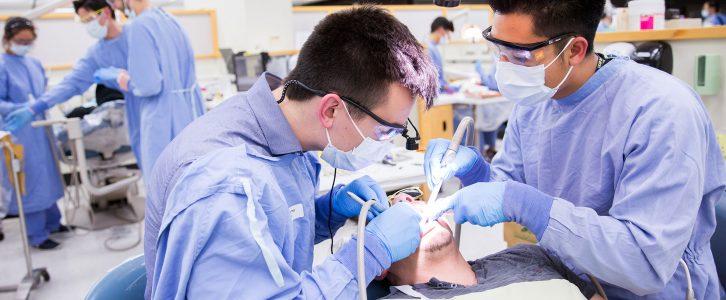 Weitere Details zur zahnärztlichen Weiterbildung